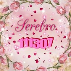 111307 - Серебро