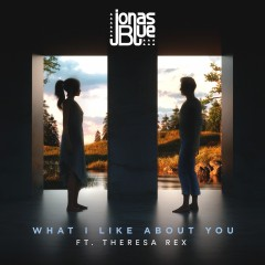 What I Like About You - Jonas Blue Feat. Theresa Rex