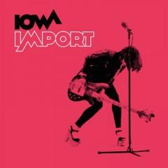 Мои Стихи, Твоя Гитара (Remix) - Iowa