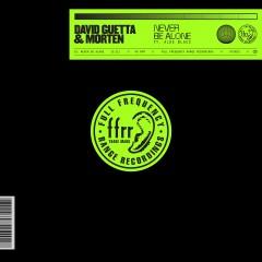 Never Be Alone - David Guetta & Morten Feat. Aloe Blacc