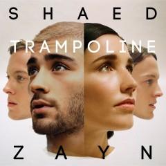 Trampoline - Shaed & Zayn