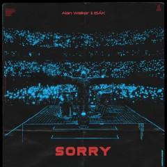 Sorry - Alan Walker feat. ISAK