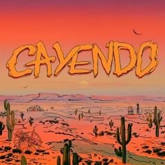 Cayendo (Remix) - T-Fest & Дора