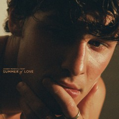 Summer Of Love - Shawn Mendes & Tainy