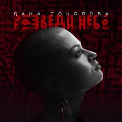 Разведи Небо - Дана Соколова
